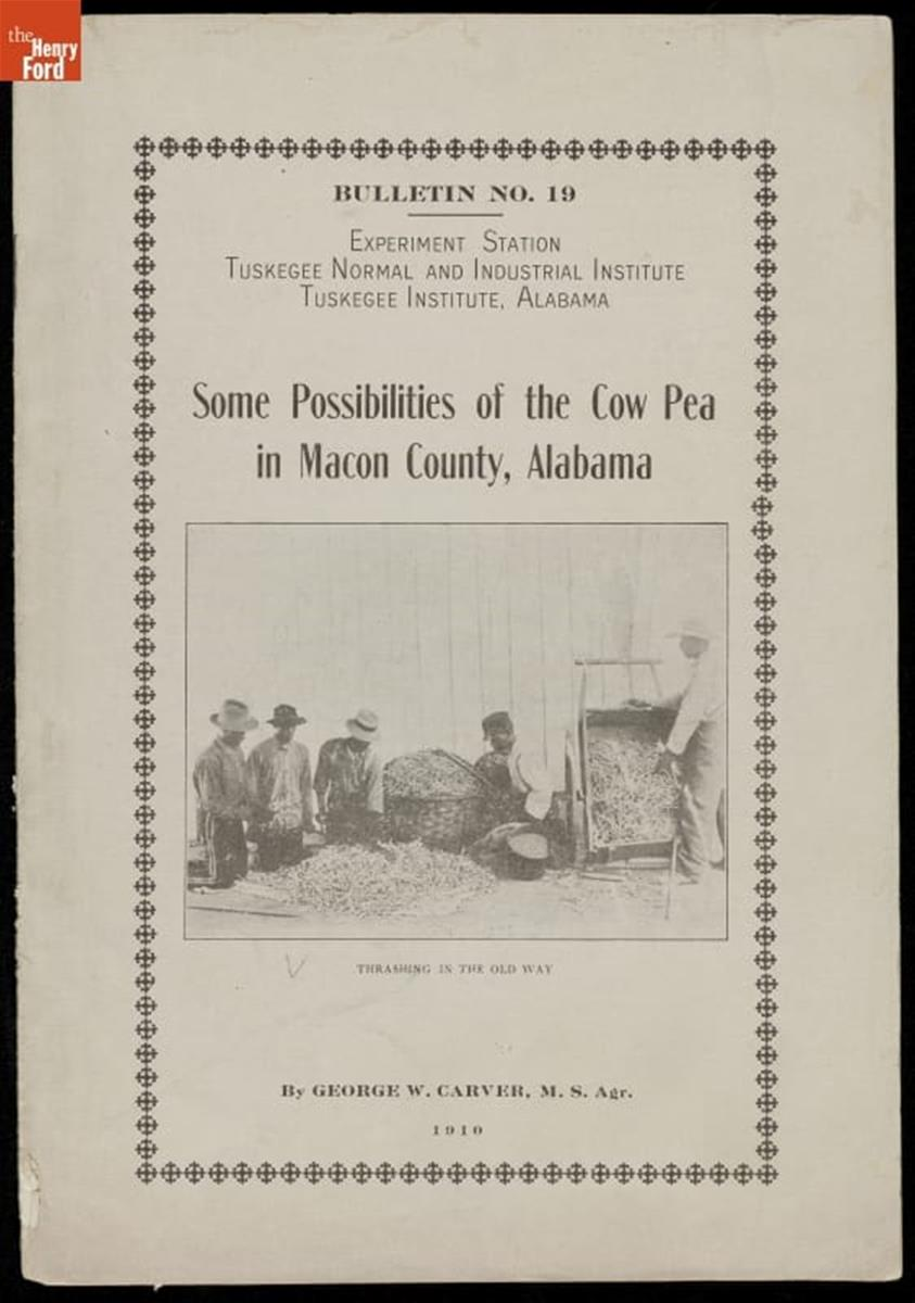 Page with text and photo of men with baskets of peas