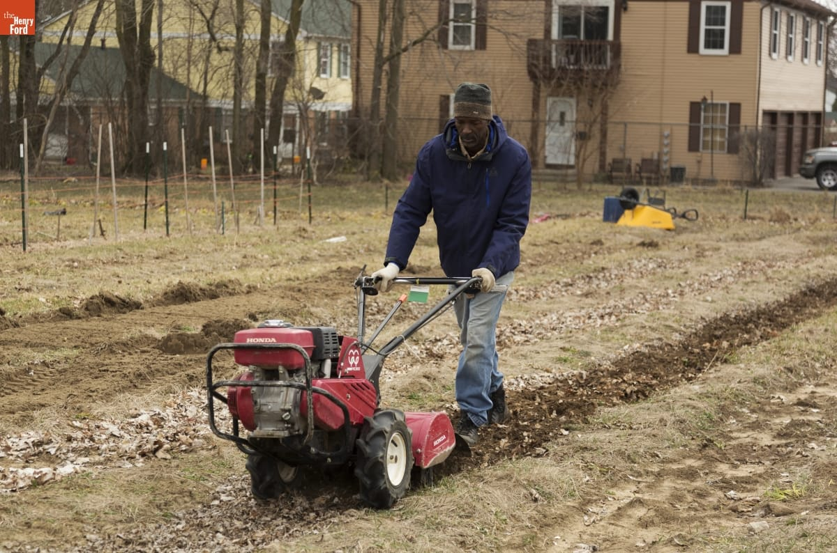 A Black man walks in a field guiding a tiller, with houses and fencing in the background