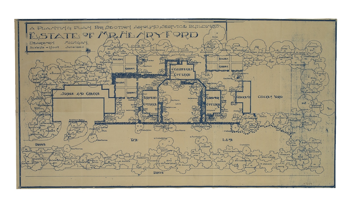 Blueprint showing somewhat abstracted indications of trees, lawn, house