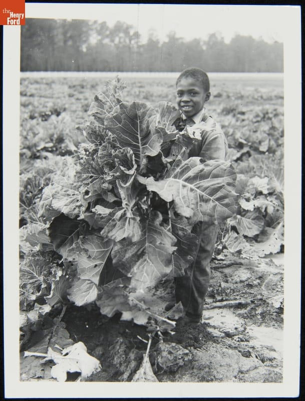 Black child holding large bunch of greens in a farm field of the same greens