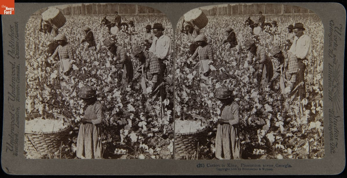 Double image showing people of color picking cotton in a field with a large basket of cotton in foreground